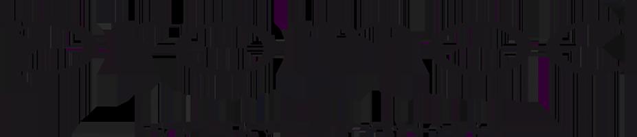 logo-promod-sale