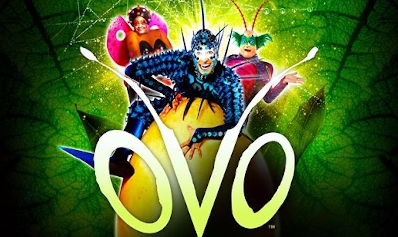 Upto 25% Off Cirque Du Soleil OVO Tickets at Ticketmaster