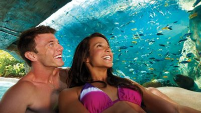 SeaWorld & Aquatica Orlando Valentine's Day Sale!