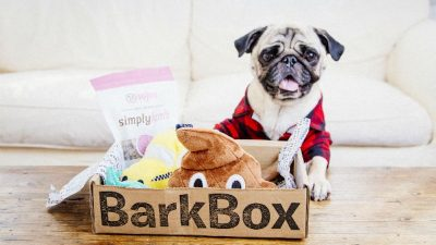 SALE at BarkBox