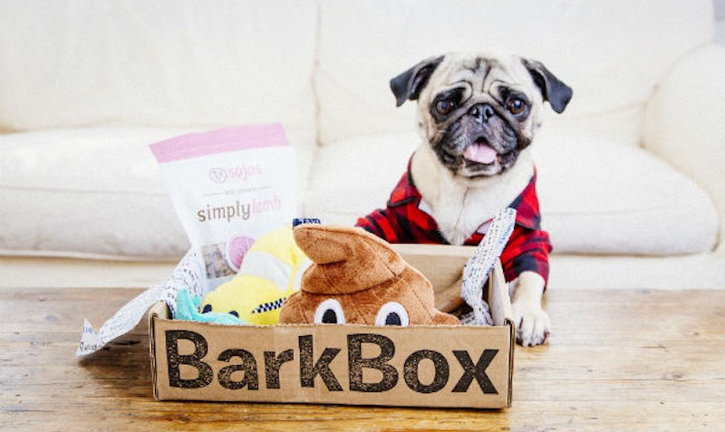 SALE at BarkBox
