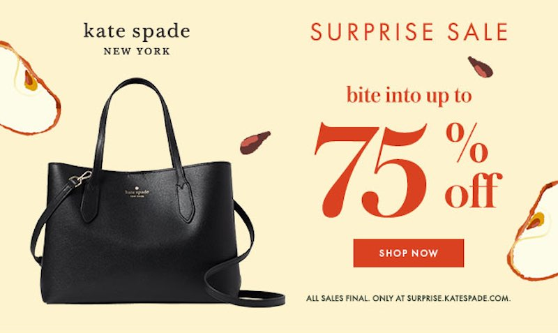 Promo Code at Kate Spade Surprise